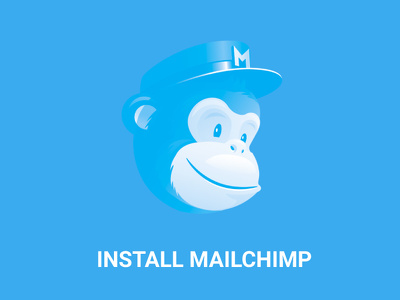 Create And Install MailChimp Subscription for Your Website