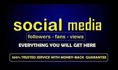 3500 Authentic Twitter Follower/ HR Youtube Views or 1500 HQ Social Media Audience