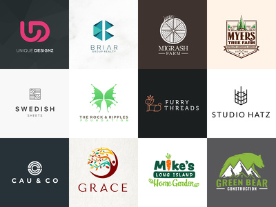 Design PROFESSIONAL LOGO with all source files, favicon and unlimited revision