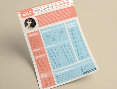 Create an Awesome Infographic Resume 24 hours