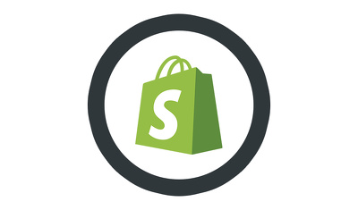 Provide 1 hour of Shopify support, customization, bug fixing, speed optimization