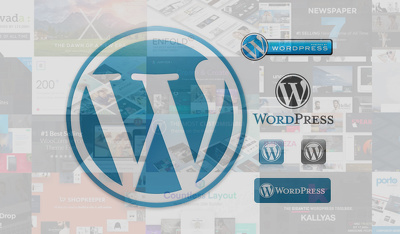 Install and configure any WordPress theme to your server as per demo
