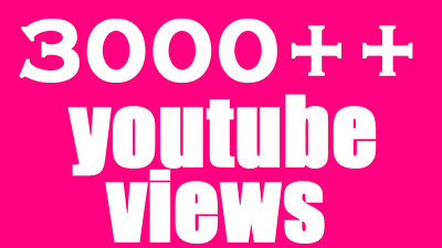 3000 +HQ Lifetime Guaranty You tube Views and 300+ Non Droop you tube likes