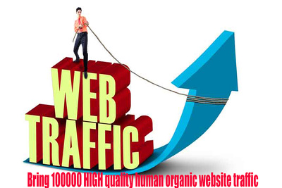 Provide 100k google and adsense Safe traffic (Real Visitors only -no Bot)