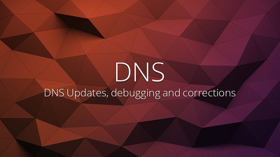 Update or debug issues with your DNS for one domain