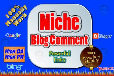 Provide 10 NICHE Relevant Blog Comment High Quality & High PR/DA, 100% Manually