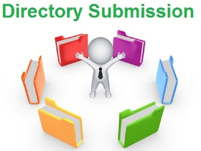 Create 100 directory submission manually within 5 days