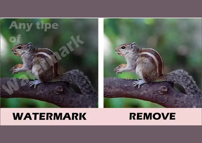 Watermark remove and  Victoraiz,  Any type Image with 24 hours