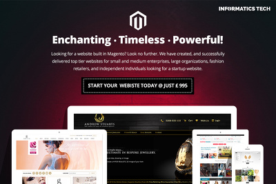 Design and develop a professional Magento ecommerce website for your next big idea