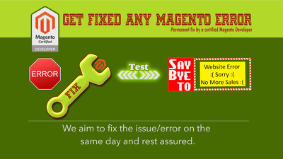 Fix any MAGENTO related error/issue on the same day of service purchased