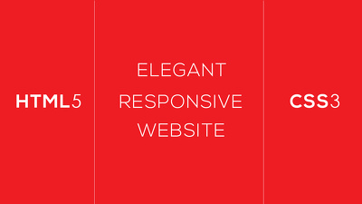 Create an appealing, exquisite and fully responsive website