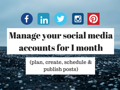 Manage your social media accounts for 1 month (plan, create, schedule & publish)