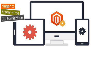 Provide 1 hour customization/updates/support  to your Magento site