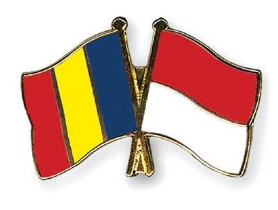 Fluent translation from Indonesian to Romanian or Vice Versa (500 words)
