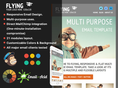 Design responsive html Email Template Newsletter or editable mail chimp template