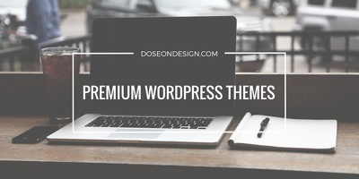 Install and customize your WP themes
