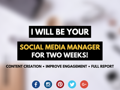 Manage and create content for your Social Media pages for TWO WEEKS!