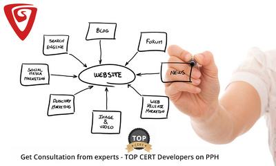 Provide 1 hour of consultation on your website design/re-design/development strategy