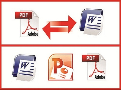 Type 30 pages of pdf or 10 scanned pages to word or excel or ppt