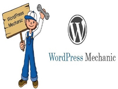 Fix WordPress errors & bugs