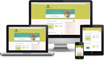 Create Custom Responsive Same Day Website - Free Logo & Email Signature
