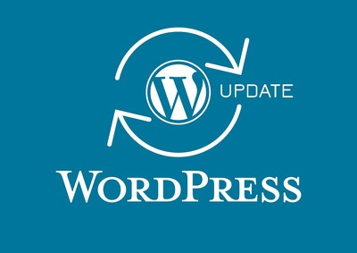 1 hour of maintenance on site to update your Wordpress system, update your plugins