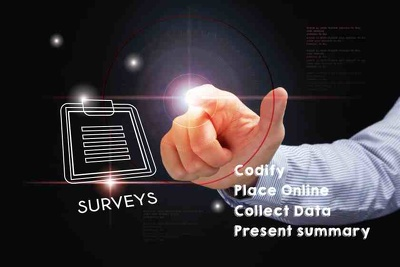 Place a survey online, collect the data and delivery some summary about the data