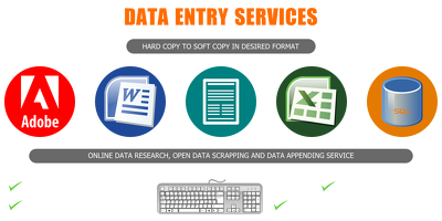 Do any type of Data Entry project with my 5 years exp.