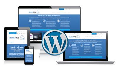 Provide Unique responsive Wordpress website