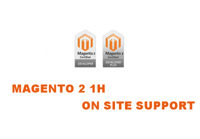 1h on site magento2 support in London (VAT and pph fee Inc)