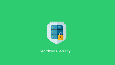 Do WordPress Security Optimization Service