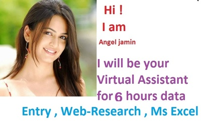 Be your Virtual Assistant for 6 hours data entry, Excel