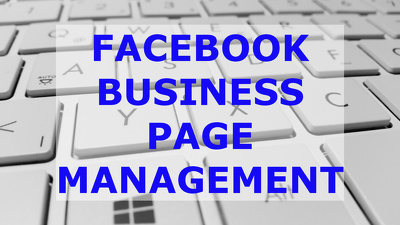 Personally Be Your Social Media Manager And Promoter