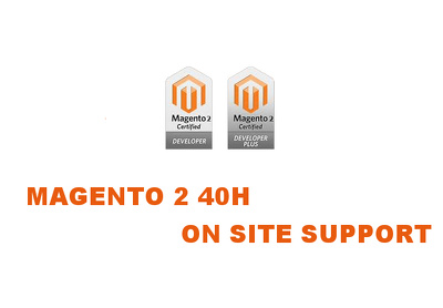 Magento2 20h onsite work in london VAT Inc