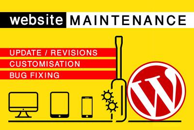 Fix Wordpress Errors, Issues, Problems