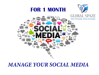 For one month completely manage one social media profile with content and engagement