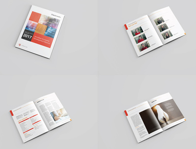 Design Unique Annual Report or Business Proposal