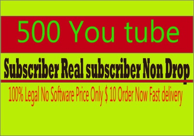 Provide you 1000 you tube subscribe real human non drop.
