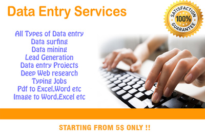Do any kind of Data entry/Web research/Lead generation/email professionally for 1 Hr