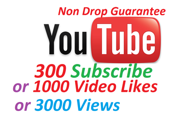 Add 300 Genuine Youtube subscribers or 1000 Likes or 3000 Youtube Views