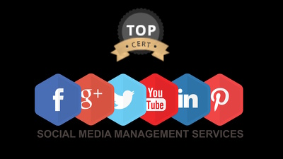 Social Media Marketing: Manage your social media pages - All Social Media Accounts
