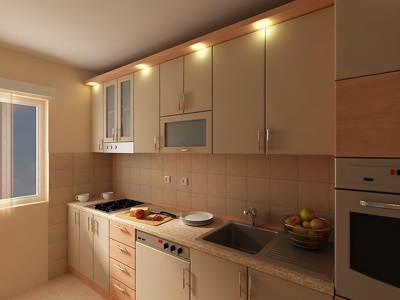 I can make 3D renders and 2D technical drawings of kitchen