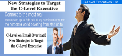Deliver Database of C-Level (Director) Contacts to boost Sales