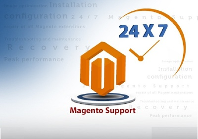 Fix Any Bugs in Magento Site