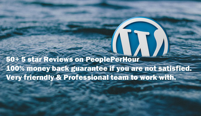 Build Responsive and SEO Friendly WordPress/CMS based website