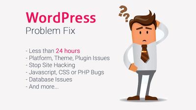 Fix Your WordPress Problem, Error or Issue