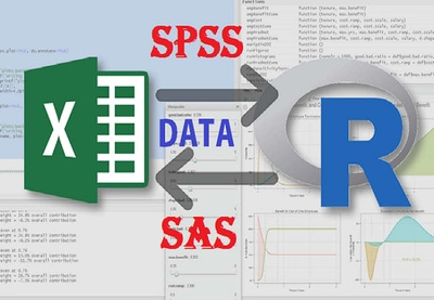 Do Any Data Analysis Using Excel Spss R And Sas within 2 days