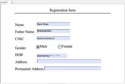Edit PDF or Create Editable PDF form In 24 hours