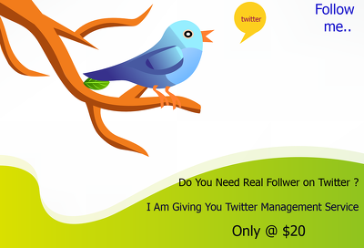 Manage Your Twitter Account To Gain Real Follower
