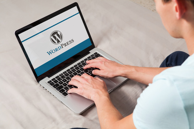 Install Wordpress, WP Theme And Setup Like Demo, or Fix Wordpress Or Responsive Issue